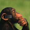 Bluetooth monkey